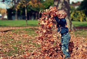 Child playing with dry leaves