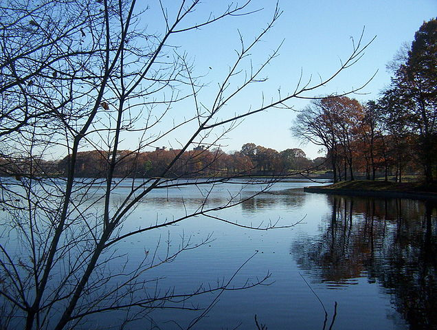 Newark lake.