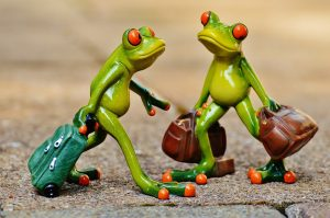 Picture of frogs with suitcases